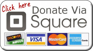 donate with square
